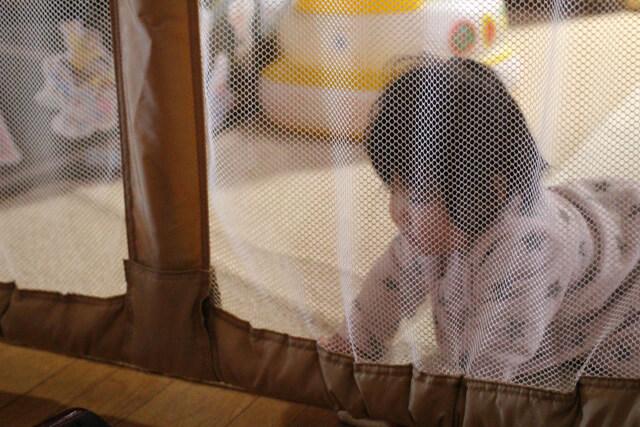 ベビーゲートの中にいる赤ちゃん