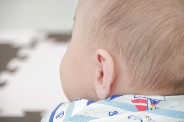後ろから見た赤ちゃんの耳