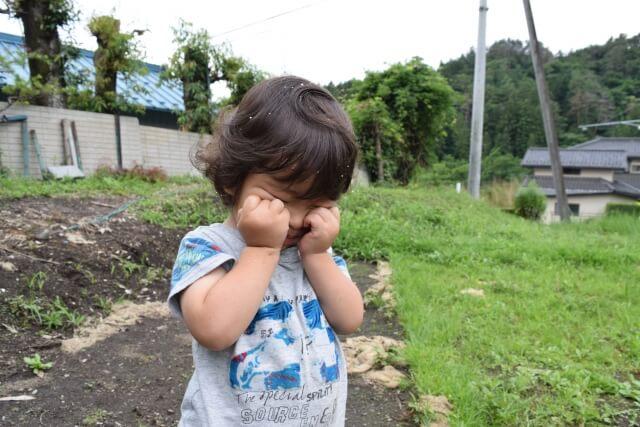 道端で泣く小さな女の子
